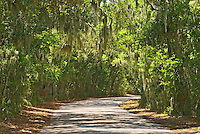 Florida, Fernandina Beach, Fort Clinch State ParkFlorida, Fernandina, Fort Clinch State Park