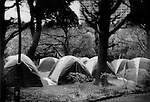 Camp erected for homeless in Tokyo by an NPO (non-profit organization) that provided shelter for four days for over 500 homeless and raise domestic awareness of the problem in Japan, Hibiya Park, Tokyo.