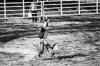 Rodeo Hard WestPart2