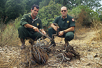 Servizio di prevenzione e repressione del bracconaggio ai danni dei cinghiali. Trappole sequestrate..Service of prevention and repression against the poaching of wild boar. Traps seized....