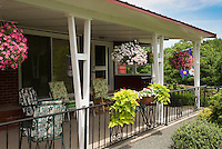 Front porch house hanging plants containers and windowboxes of Ipomoea Margarita sweet potato vine, Calibrachoa, annual flowers for curb appeal entrance, porch furniture