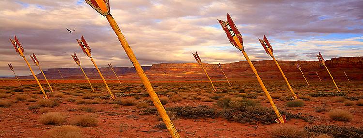 The Surreal Landscape: Desert