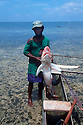 A shark caller from Kontu village on the West Coast of New Ireland, brings in a shark he caught on his outrigger canoe..Kontu, New Ireland Province, Papua New Guinea;