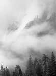Shrouded cliffs and trees on Glacier Point, Yosemite National Park, California