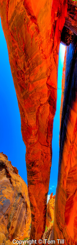 Morning Glory Bridge, Negro Bill Canyon, Utah, Near Moab and Colorado River, One of the world's largest natural spans