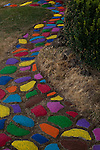 Rock path through yard with rocks multicolored