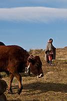 10 May 2011, Ha Tsekana Village, Semonkong Community Council, Lesotho.