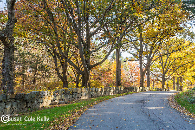 Fall foliage at Maudsley State Park in Newburyport, Massachusetts, USA