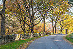 Fall foliage at Maudsley State Park in Newburyport, Massachusetts, USA