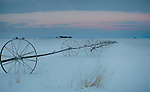 Idaho, South Central, Twin Falls, Hansen. Pre-dawn light over a farmers field with irrigation lines in winter.