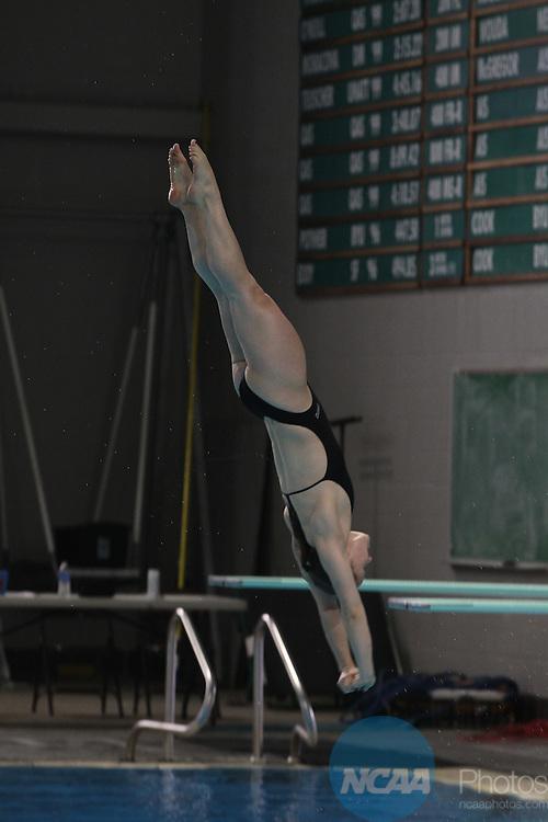 2014 mwc women 39 s swim dive ncaa photos - Palo alto swimming pool san antonio ...