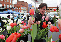 Vendor Charlotte Morford of Charlotte's Garden neatly arranges cut tulips for a sparse crowd kept away by rain Saturday morning at the Charlottesville City Market on Water Street. The market continues every Saturday through October. Photo/The Daily Progress/Andrew Shurtleff