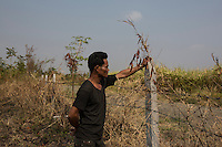 Cambodia - Kampong Speu Province - Youn Vauna, 38, standing in his land and looking at the sugarcane plantations who belong to a local tycoon on the other side of the barbed wire. Youn used to live in the village of Teok Thla, where he was producing charcoal from a nearby forest. He had three charcoal factories, and could make up as much as 500 USD per day. Despite having lived in the village for more than 9 years, in 2010 he was evicted to make space for the sugar plantation. Without any formal land title, he was forced to move and accept a meagre compensation of 25 USD. He relocated to the village of Pis, where he now survives by cutting bamboo on a nearby hill, after the forest was completely razed to make space for the plantation.