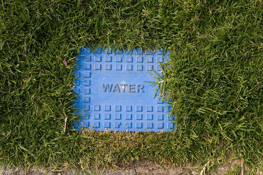 Water, Tauranga 2008