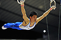 Kazuhito Tanaka (JPN),.APRIL 7, 2012 - Artistic gymnastics : The 66nd All Japan Gymnastics Championship Individual All-Around , Men's Individual 1st day at 1nd Yoyogi Gymnasium, Tokyo, Japan. (Photo by Jun Tsukida/AFLO SPORT) [0003]