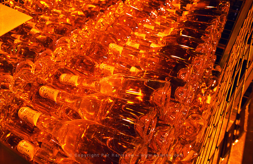 Inside the Oremus winery in Tolcsva, Tokaj: in the bottle storage room, thousands of bottles with Tokaj wine aging and glowing luscious golden in the light. Oremus is owned by the Alvarez family that also owns Vega Sicilia in Spain It is managed by Andras Bacso. Credit Per Karlsson BKWine.com
