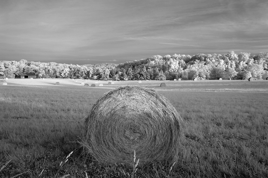 Hay bales in a field photographed in infrared in Greene County, Va. Photo/Andrew Shurtleff