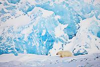 Winter in Svalbard, Norway