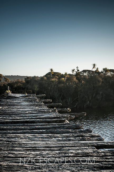 Remnants of old wooden bridge near Okarito, Westland National Park, West Coast, World Heritage Area, South Westland, New Zealand
