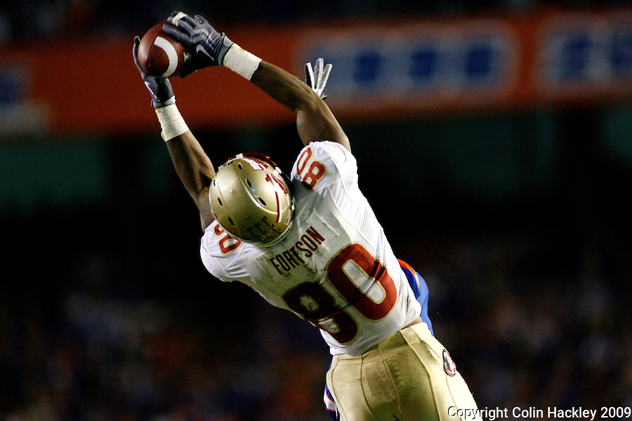 GAINESVILLE, FL 11/28/09-FSU-UF FB09 CH42-Florida State's Jarmon Fortson grabs a long pass setting up a Seminole touchdown on the next play during second half action against Florida, Saturday at Florida Field in Gainesville. The Gators beat the Seminoles 37-10..COLIN HACKLEY PHOTO