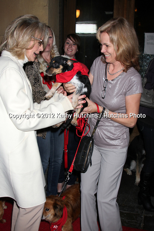 "LOS ANGELES - APR 17:  Diane Keaton, Teri Austin and Rescue dogs up for adoption arrives at the ""Darling Companion"" Premiere at Egyptian Theater on April 17, 2012 in Los Angeles, CA"