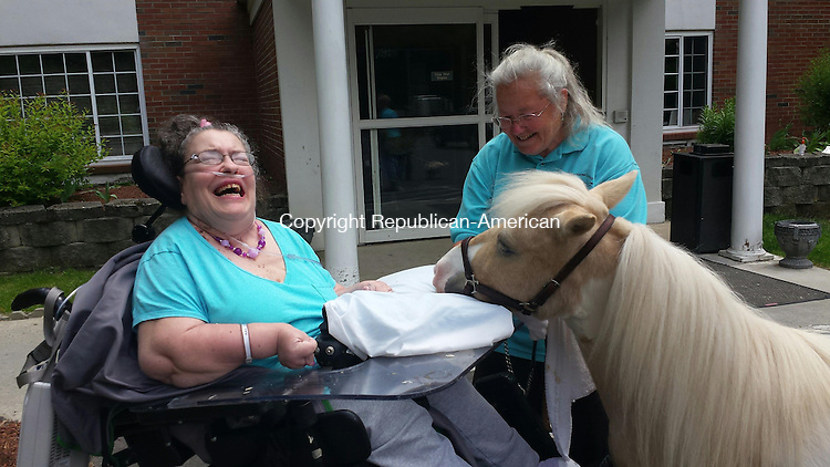 WATERBURY - Julie Walkinshaw, a resident at the Village Green rehabilitation center, enjoys a visit from Ben and his owner Christel Maturo, on Saturday.