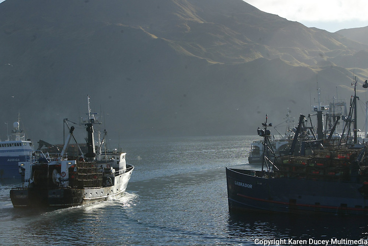 10/20/03 crab NWS::  Crab boat (also a trawler) the F/V Starlite passes crabbers and trawlers tied to the Alyeska Seafoods processing plant in Dutch Harbor on its way out to the crab fishing grounds approximately 24 hours away, or 160 miles, in Bristol Bay. This year's ADFG forecast of 14.7 million pounds was the largest projected harvest of Bristol Bay red king crab in 12 years.  It will be several weeks before crabbers know if that harvest was met.