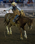 Terrell Smith, from Vaughn MT, holds onto Raylene during the Saddle Bronc Riding event at the Kitsap County Fair and Stampede  held Aug. 26 to Aug. 30, 2009 in Silverdale, WA.  Jim Bryant Photo. All Right Reserved. © 2009