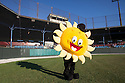 ***For Metro's Roads to Summer feature series***  The Pittsfield Suns' mascot 'Ray' dances between innings as the Suns play a double-header against the North Shore Navigators at Wahconah Park in Pittsfield, MA on Monday July 2, 2012. Wahconah's home plate famously faces west and creates one of baseball's most unusual events on a sunny summer evening - a sun delay.  (Matthew Cavanaugh for The Boston Globe)