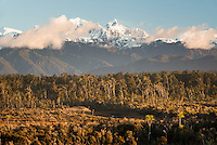 Southern Alps with Mt. Tasman and Aoraki, Mt. Cook and coastal forest of Five Mile Lagoon in foreground, Westland Tai Poutini National Park, West Coast, UNESCO Wolrd Heritage Area, New Zealand, NZ