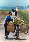 Boy pushing bike loaded with vegetables on country lane.Pictures taken in Canton China in 1977 at the time of the cultural revolution.
