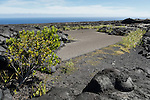 Hawai'i Volcanoes National Park, Big Island of Hawaii, Hawaii; remnants of the old Chain of Craters Road is still visible amongst the lava rock from the 1972 eruption