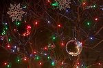 Christmas ornaments and lights hanging from a tree.