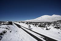 Up the Tiede Vulcano, Tenerife 2016