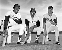 San Francisco Giants sluggers, Bobby Bonds, Willie Mays, and Ken Henderson (1972 photo by Ron Riesterer)