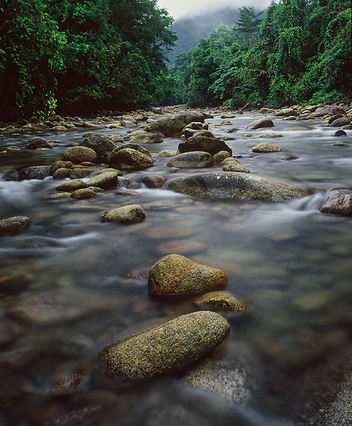 Double-Barrelled Creek,<br /> Babinda,<br /> FNQ