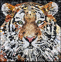 BNPS.co.uk (01202 558833)<br /> Pic: Bluebowerbird/BNPS<br /> <br /> Tiger, tiger plastic sight.<br /> <br /> PopArt - Artist Jane Perkins recreates famous people and paintings from recycled plastic rubbish.<br /> <br /> Her stunning 'Plastic Classics' generate the most interest and sell for thousands of pounds.<br /> <br /> She has created rubbish replica's of famous paiintings by Van Gogh's, Monet, Raphael, Gustav Klimt, Salvi and Frida Kahlo as well as Japanese artist Katsushika Hokusai's the Great Wave of Kanagawa.<br /> <br /> She also creates pictures of animals for private commissions. For example, a stunning work of a tiger's head is made up of objects like plastic toy animals, golf tees and beads.<br /> <br /> Jane, a former hospital nurse from Kenton, near Exeter, Devon, now sells her work for up to &pound;2,500 a go.<br /> <br /> She said: &quot;I go to car boot sales and buy anything that is plastic, mostly toys and bits of broken jewellery, anything small. The neighbours often give me bags of bits and pieces they no longer want. <br /> <br /> &quot;People love them because they can see the whole image but also see what is in it. They can find things in them that they recognise, like little bits from their childhood.