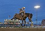 2015 Reno Rodeo