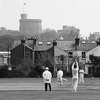 Cricket on a field with Windsor Castle in th background