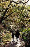 Prairie Creek Redwood State Park with sun breaking through trees with mother and daughter on walking path with walking sticks Northern California USA