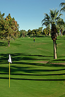 Golfer chipping uphill middle fairway, Golf Course Links, Fairways, Greens, Water Hazard, Sand Trap, Bunker, Palm Trees