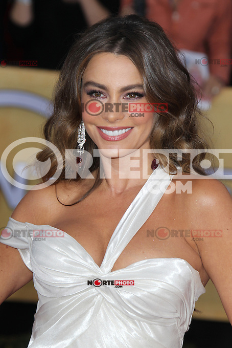 LOS ANGELES, CA - JANUARY 27: Sofia Vergara at The 19th Annual Screen Actors Guild Awards at the Los Angeles Shrine Exposition Center in Los Angeles, California. January 27, 2013. Credit: mpi27/MediaPunch Inc.