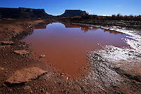 The giant canyon walls of Utah's Canyonlands National Park are reflected in the muddy puddles of a recent rain.