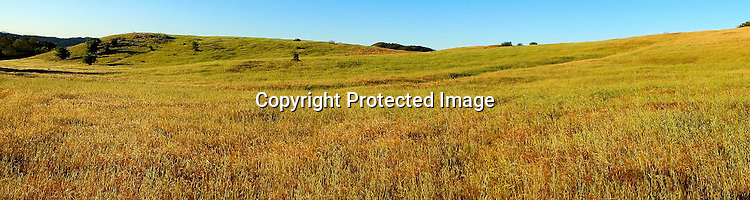 Field and sky panoramic view in landscape