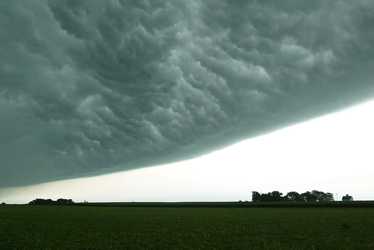 Thunderstorm clouds descend east of Lincoln as part of a severe summer storm that blanketed central Illinois with heavy rain, wind, and lightning. In some locations 60 mph winds knocked down power lines and damaged homes with toppled trees and limbs.
