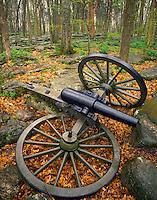 Broken artillery in forest, Stones River National Battlefield, Tennessee