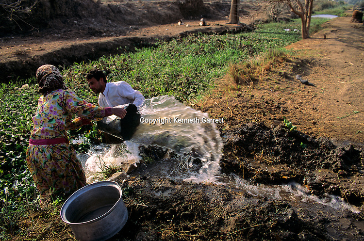 Egypt's Old Kingdom; Irrigating fields with water from a canal; Egypt,Agriculture; farming; Irrigation; Egypt's Old Kingdom; Daily Life; Egypt; farmer; traditional