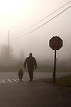 Man walking his dog down a foggy country road, Auburn California