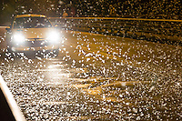 Car crossing a bridge illuminates the swarming of the mayfly (Ephoron virgo) that returned to river Danube after four decades of absence in Tahitotfalu (some 32 km north from the capital city Budapest), Hungary on August 24, 2013. ATTILA VOLGYI