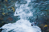 &quot;WINTER DANCER&quot;<br />